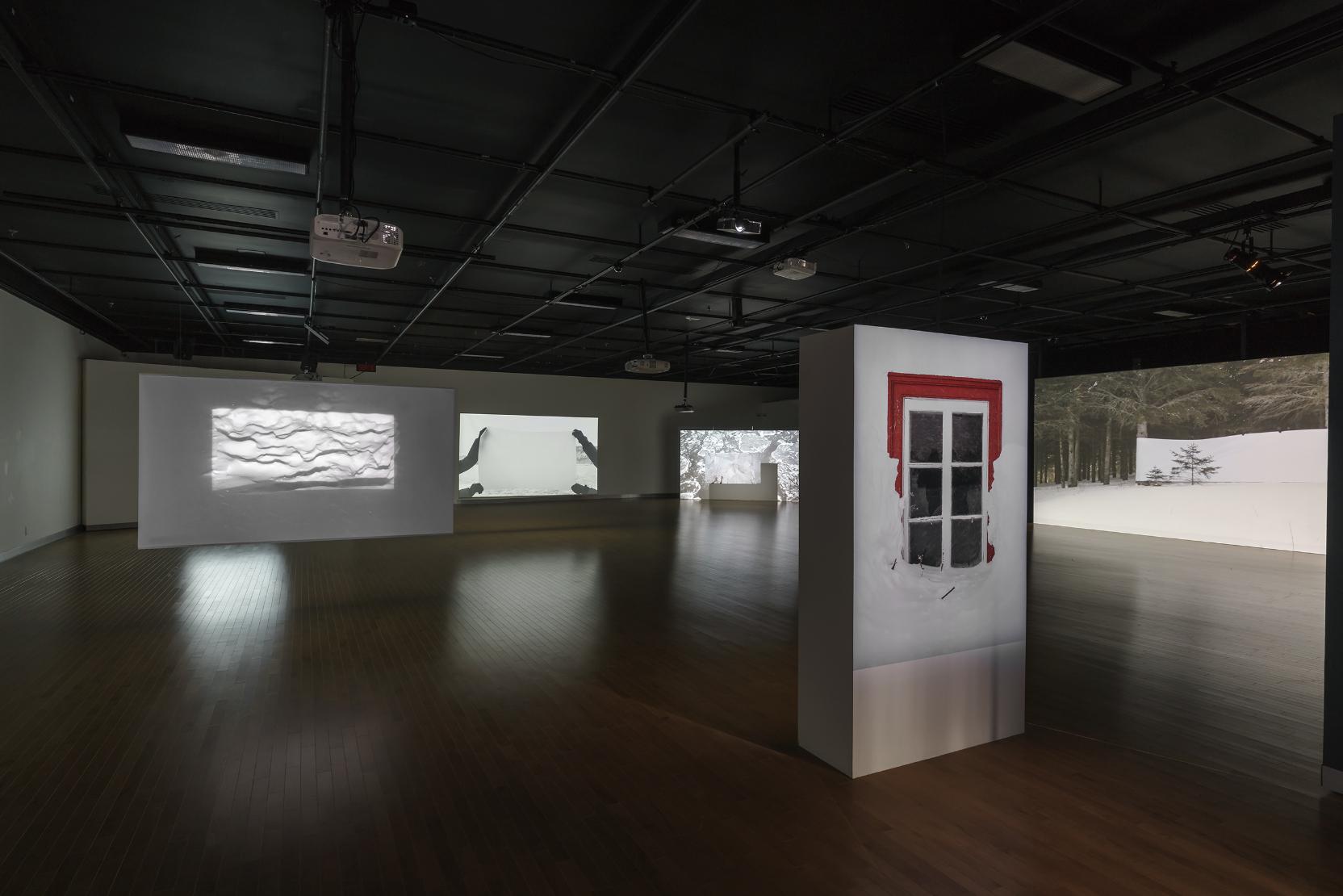 Catherine Barnabé, Géographies : recomposées, Salle Alfred-Pellan à Laval (Québec), 2017, Photo © Guy L'Heureux