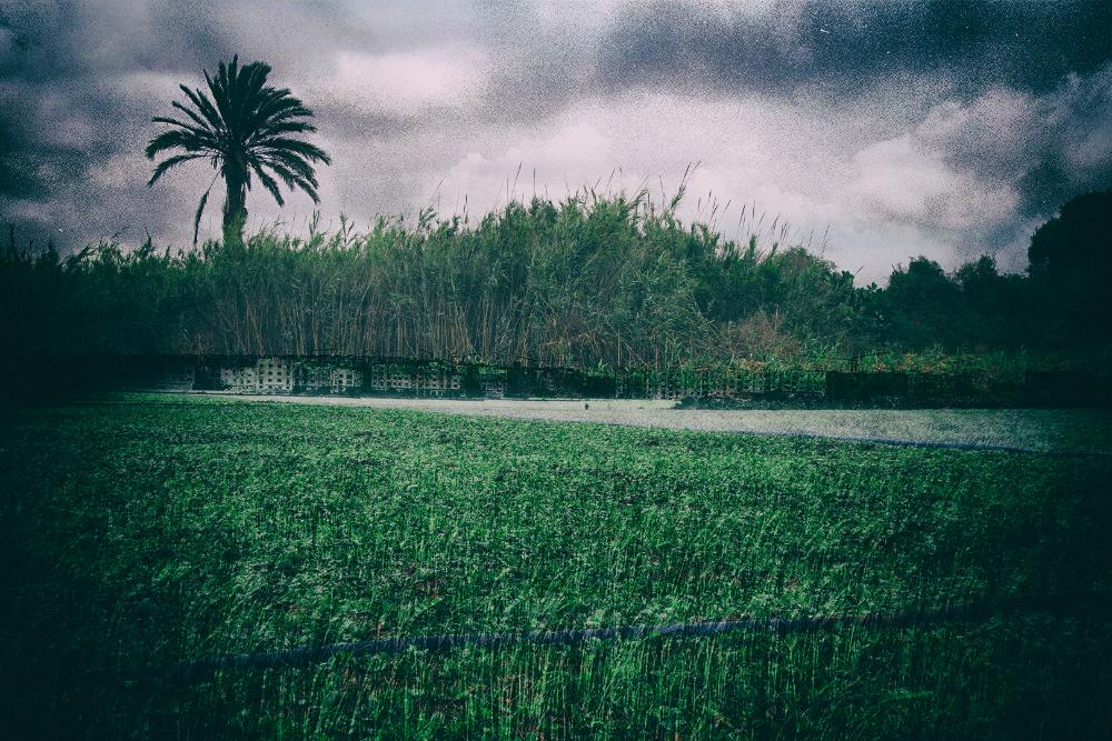 Abderrahmane Doukkane, Un Oued qui traversait ma ville 02, 60x90 cm, double exposition