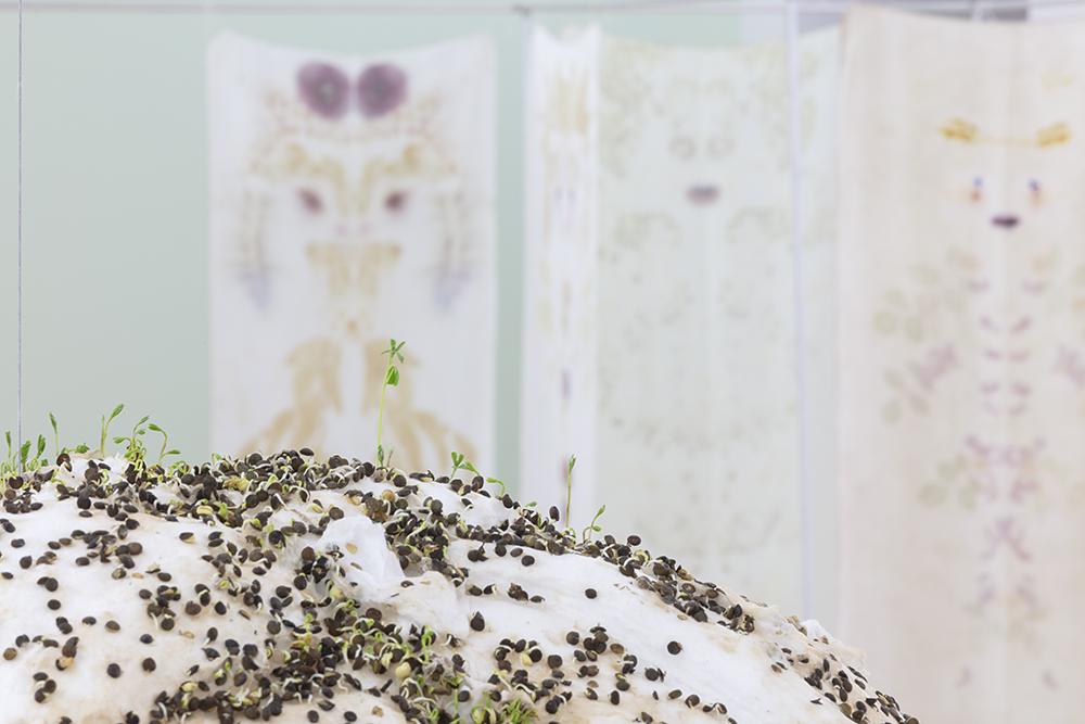 Sans titre (boule de lentilles) - Michel Blazy, Una Casa - Chiara Camoni, Vue de l'exposition Pendant que les champs brûlent, Maison des Arts Georges et Claude Pompidou, 2020. Photo © Yohann Gozard.