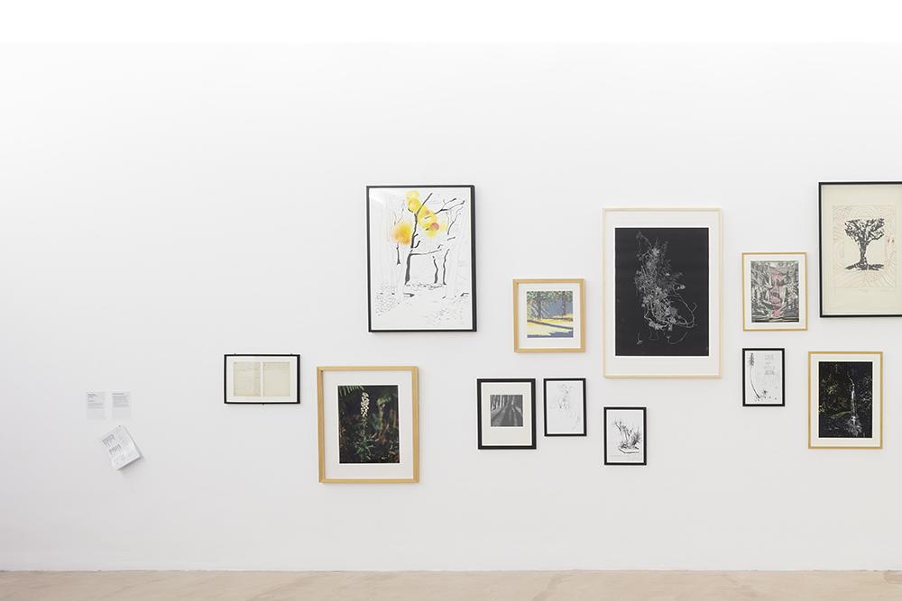 """Une forêt d'œuvres, collection de l'artothèque du Lot, Vue de l'exposition """"Pendant que les champs brûlent"""", Maison des Arts Georges et Claude Pompidou, 2020. Photo © Yohann Gozard."""