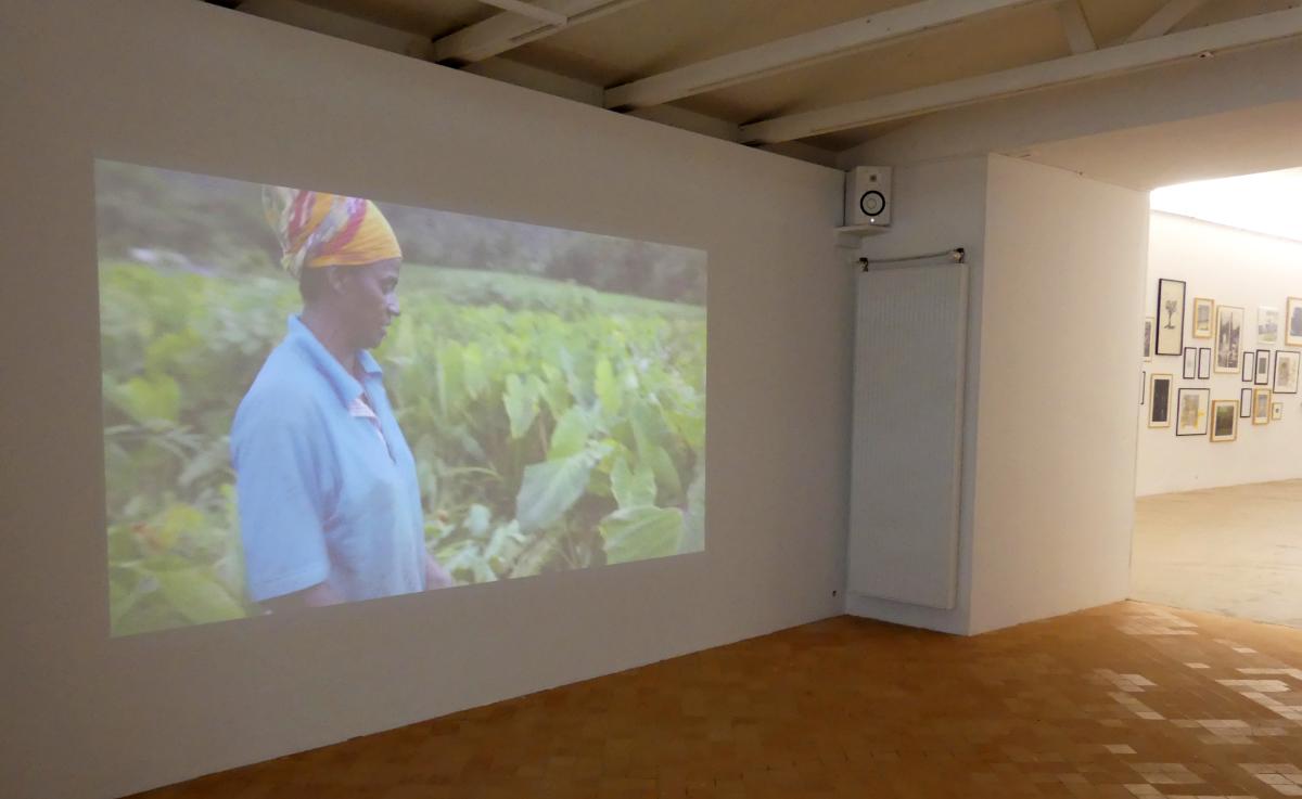 """""""125 Hectares"""", Florence Lazar, Vue de l'exposition """"Pendant que les champs brûlent"""", Maison des Arts Georges et Claude Pompidou, 2020. Photo © MAGCP."""