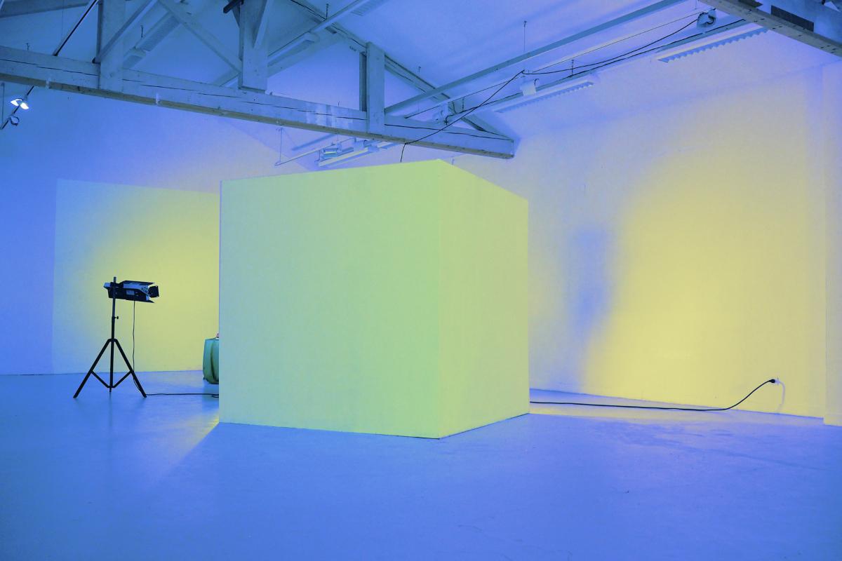 "Clémentine Poirier, ""Green space"", 2017, installation multimédia, MO.CO.ESBA Montpellier. Courtesy de l'artiste"